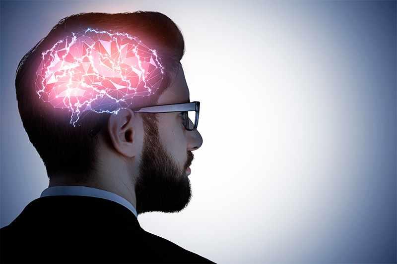 Мозг-сексуальный орган
