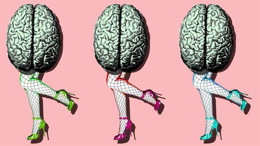 Мозг как сексуальный орган