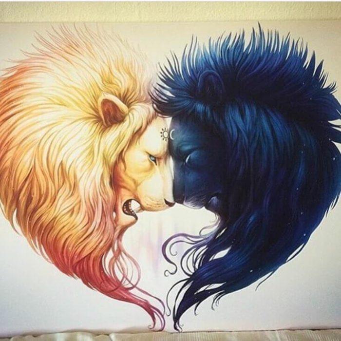 Как влюбляется лев