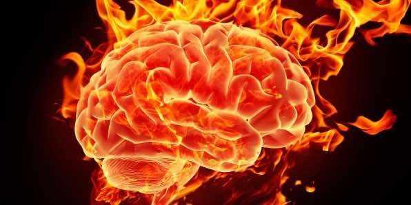 вашему мозгу 20-35 лет